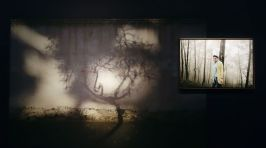 Sebastien Cuvelier, Paradise City - Les Boutographies 2019 - Vue de l'exposition