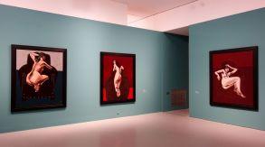 Vincent Bioulès - Chemins de traverse - Ce qu'il y a de plus compromettant au Musée Fabre 301