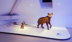 Art Orienté Objet - La fin du XXIe siècle, 2017 - Bêtes de scène à la Villa Datris - Survies Animales