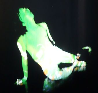 Emmanuel Guillaud et Takao Kawaguchi - I'lick the fog off your skin, version 2019 - Viva Villa 2019 - Collection Lambert