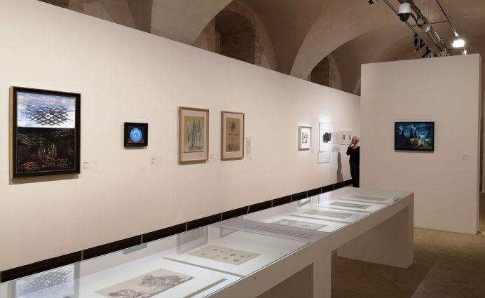 Par hasard à la Vieille Charité – Marseille - Vue e l'exposition - Salle 2
