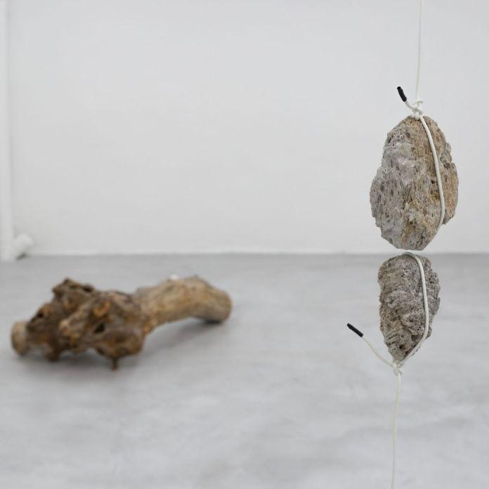 Romain Dumesnil - Lapso (Lapse), 2019 - L'échantillon d'un jardin à la galerie de la Scep – Marseille - Photo Nassimo Berthommé