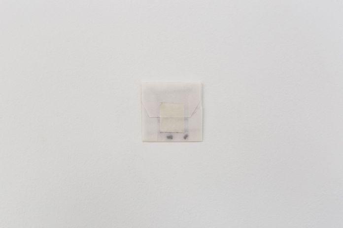"""Valentin Martre - Fragment de """"Semer des semeurs"""", 2019 - L'échantillon d'un jardin à la galerie de la Scep – Marseille - Photo Nassimo Berthommé"""