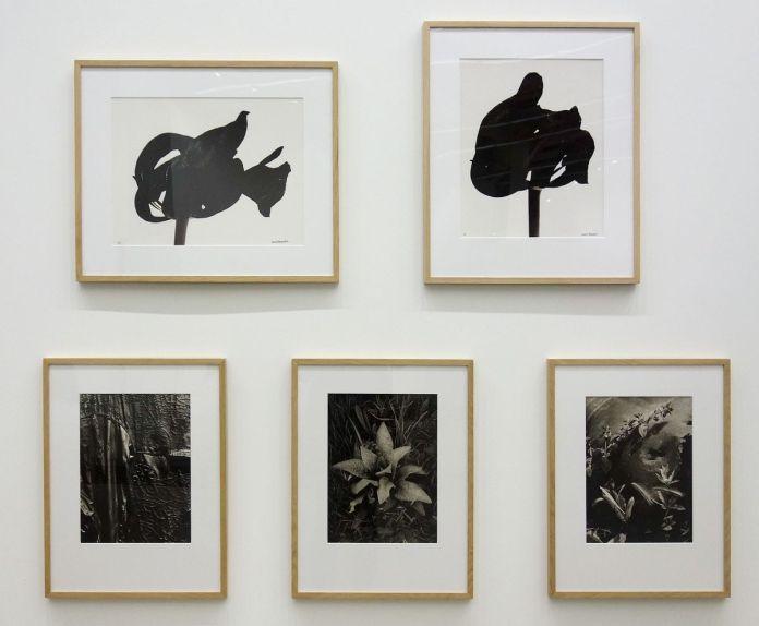 Denis Brihat - Tulipe noire, 1977 - Tulipe noire, 1980 et Pierre-Jean Amar - Dans mon jardin, 1979 - Vieil imperméable, 1979_1