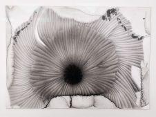 Dominique Figarella - Tâche, 2016 crayon sur papier, 31,5 x 40 cm