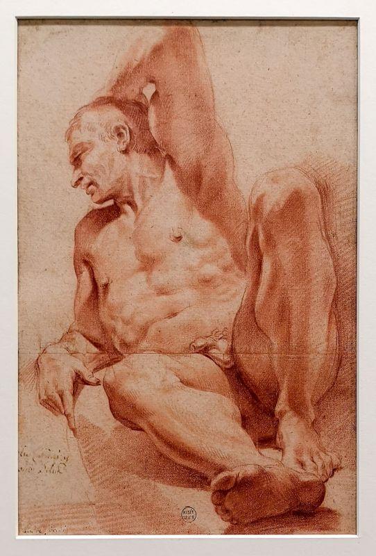 Le Dominiquin - Homme nu, assis, de face, 1ère moitié du 17e siècle - Art & Anatomie - Musée Fabre