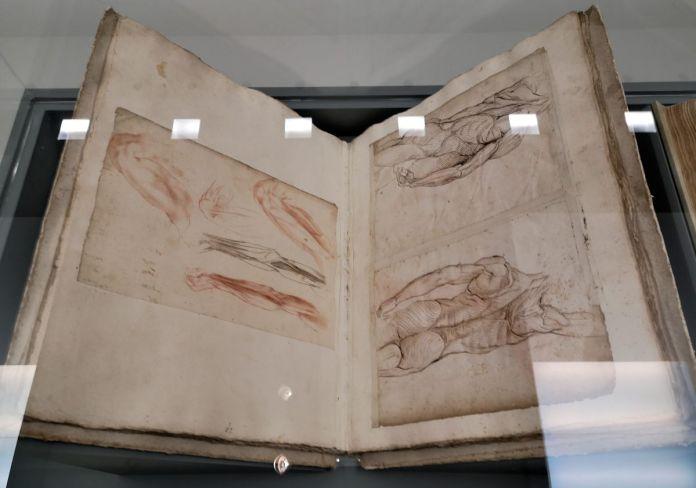 Ludovico Cardi dit Il Cigoli - Anatomia di mano del Cigoli, XVIe siècle - Art & Anatomie - Musée Fabre