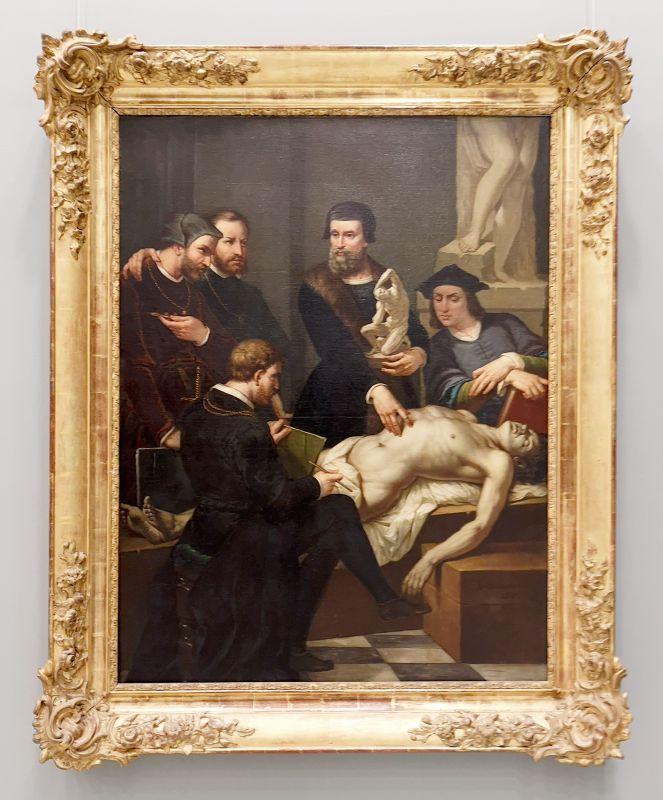Nurna Boucoiran - Leçon d'anatomie à l'usage des artistes, 1873 - Art & Anatomie - Musée Fabre