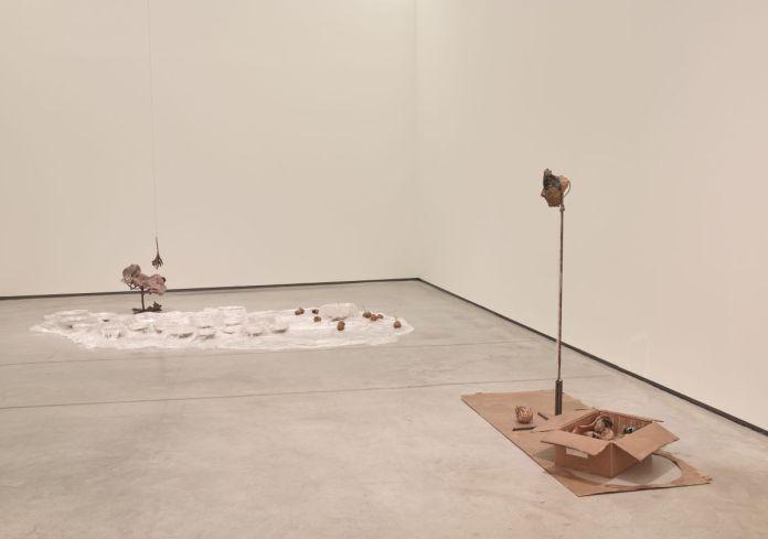 Rochelle Goldberg - Digesting gold, 2018 et Corpse, not an attraction, 2020 - Permafrost - Les formes du désastre au MOCO La Panacée - Photo © Marc Domage