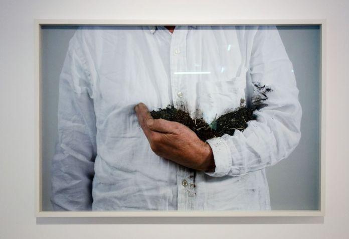 Lois Weinberger - Holding the Earth, 2010. (Photographie Paris Tsitsos) - La mesure du monde au MRAC – Sérignan