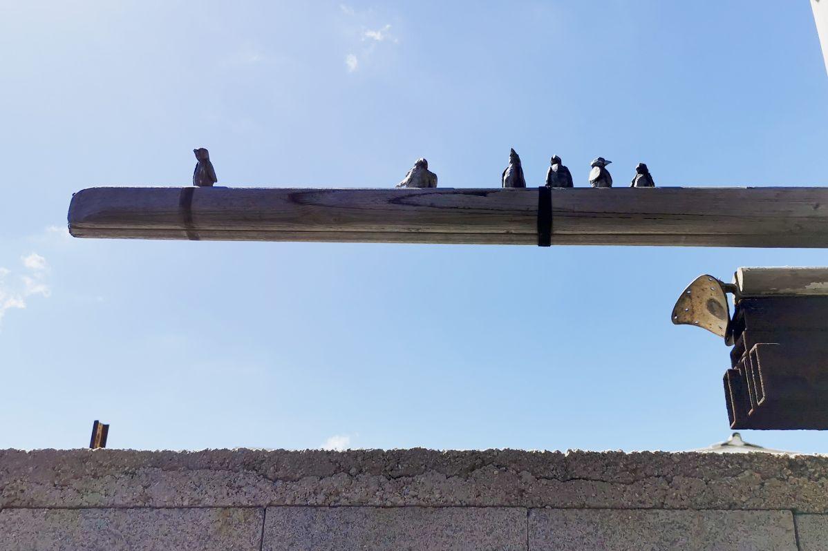 Olivier Millagou - Les oiseaux, 2020 - «Winter A-Go-Go» au Chantier Naval Borg - PAC 2020 - Marseille