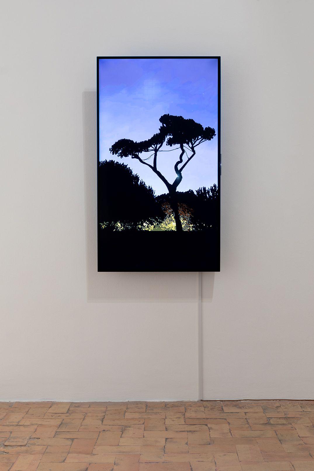 Louise Sartor, Cents vues de la Villa Médicis, credit Daniele Molajoli, exposition dans le tourbillon du tout monde, 2020