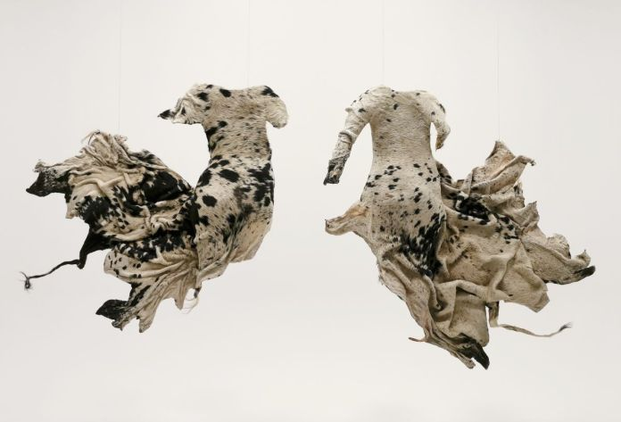 Peau de vache, résine. 125 x 134 x 29 cm et 147 x 152 x 27 cm. Courtesy Maria von Beetzen