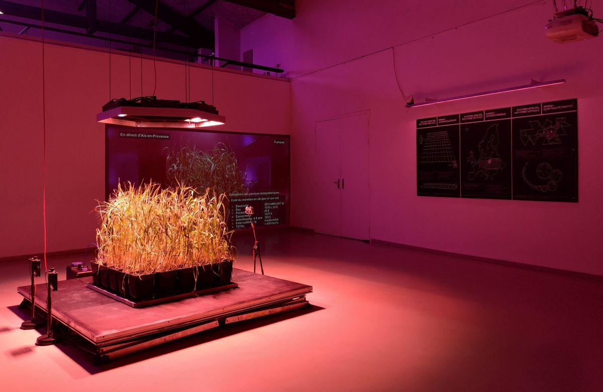 Disnovation·org & Baruch Gottlieb - Solar Share (La Ferme), 2020 - Post Growth au 3 bis f - Aix-en-Provence