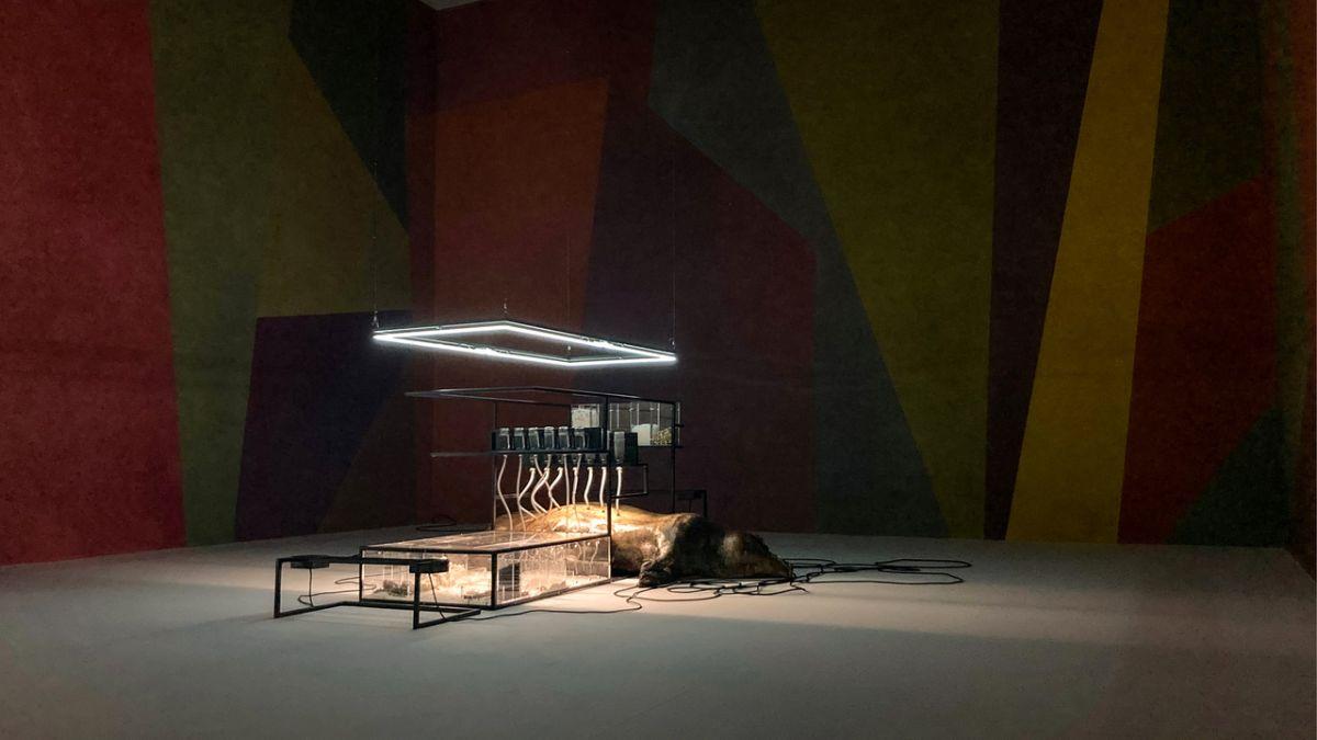 Sol LeWitt, Wall Drawing #534, 1987 et Loris Gréaud, Broccoli, 2021 - Vue de l'exposition Brocoli - Loris Gréaud + Yvon Lambert © Loris Gréaud, Gréaudstudio Photo Realism Noir