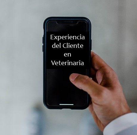 Experiencia del cliente en veterinaria