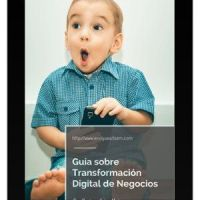 Guía sobre la Transformación digital de Negocios