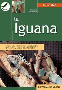 La iguana.