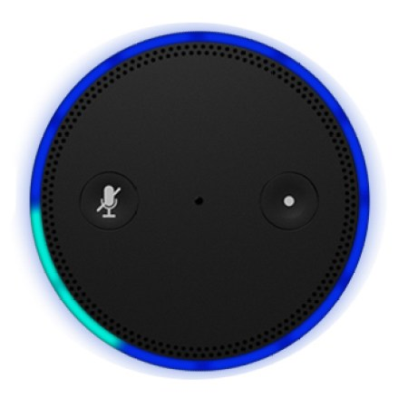 Amazon Echo (top)