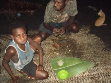 Première étape de la préparation du kava : les racines doivent être mâchées par de jeunes enfants