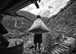 Más allá de la hoja de coca (serie x 3)