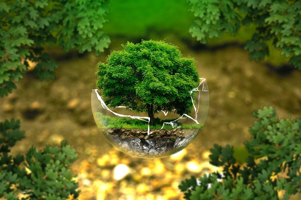 Economía circular y medio ambiente - Las 4R del reciclaje