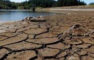 La cumbre sobre Cambio Climático se enfrenta al nuevo negacionismo