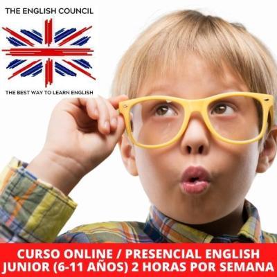 Clases de inglés online y presenciales para niños