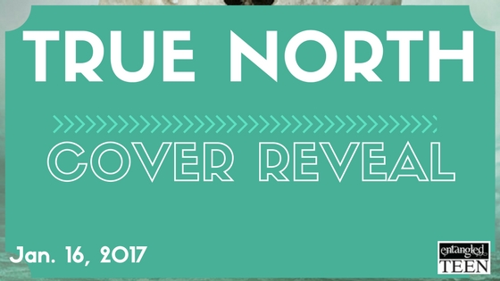 True North Cover Reveal Banner (4)