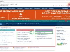 Verify Your Aadhar