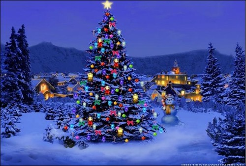 christmas snow tree wallpapers