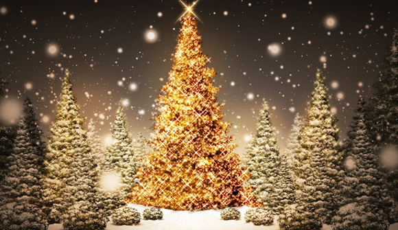 christmas season snow trees illustrative wallpaper