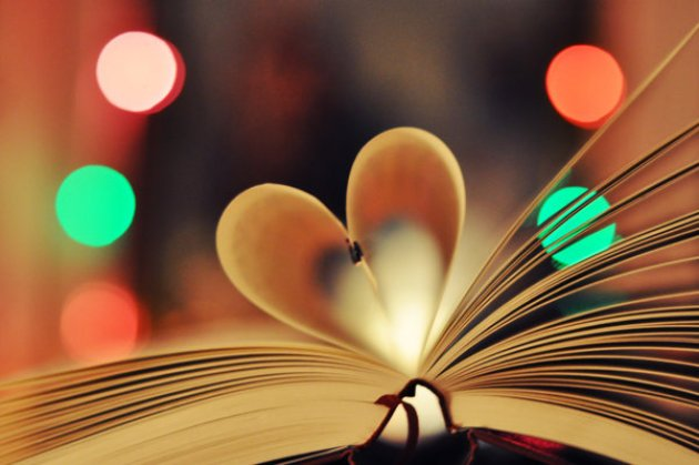 bokeh book heart
