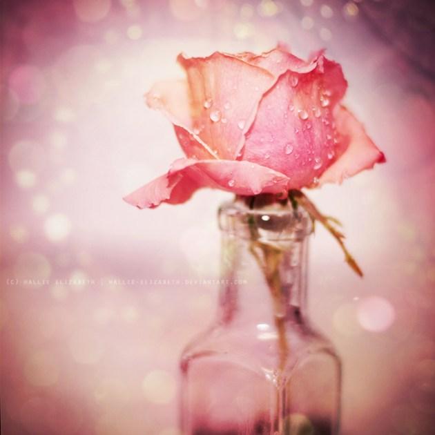 fairytale romance