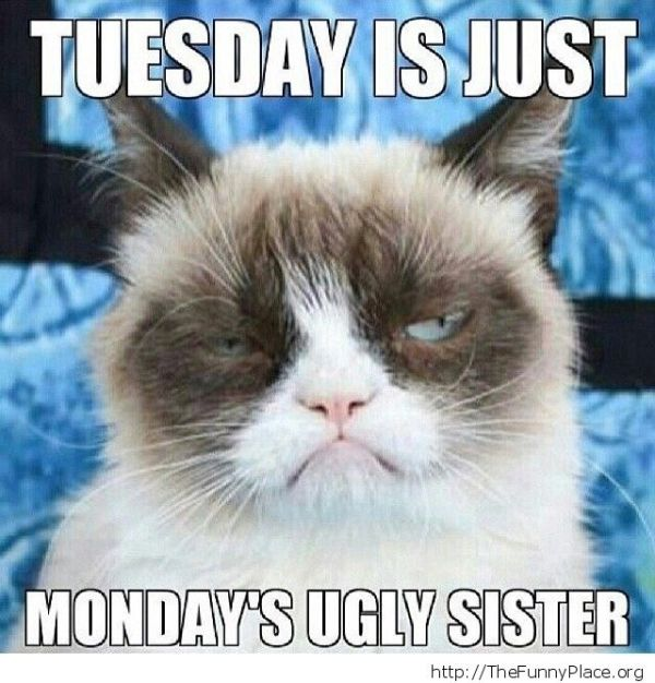 Tuesday is just Monday's ugly sister