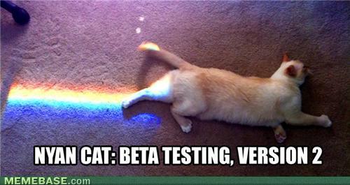 cute-funny-Cat-meme-2