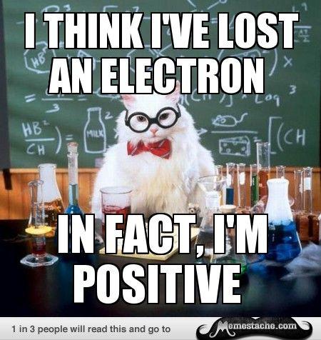 cute-funny-Cat-meme-19