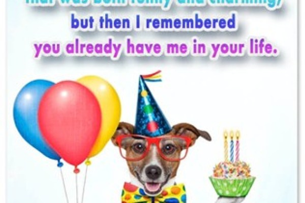 funny-birthday-greetings-wishes-messages
