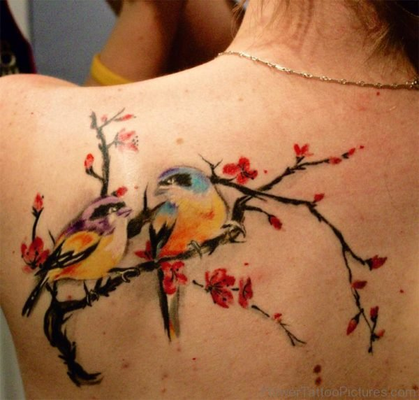 colorful lovebirds and cherry blossom tattoo on shoulder blade area for women