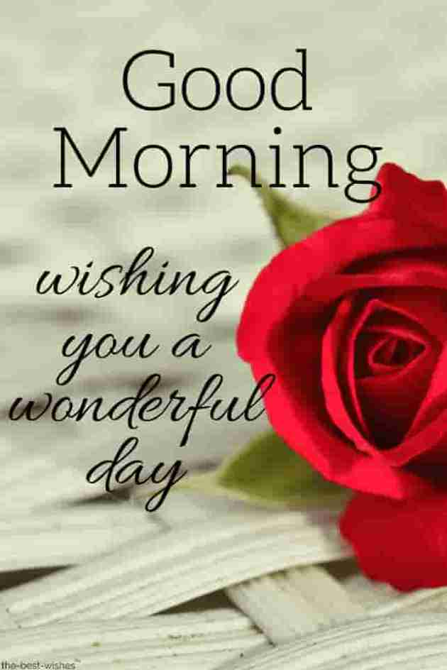 good morning wishes-message images