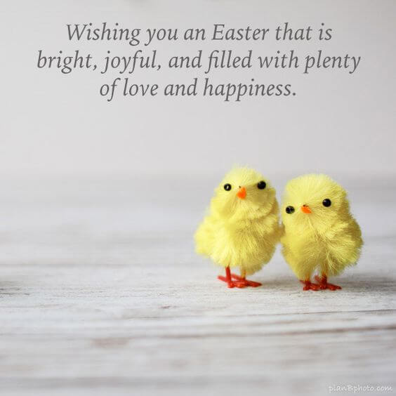 cute happiest Easter wishes image