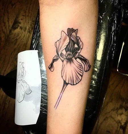 black and grey realistic iris flower tattoo design on forearm