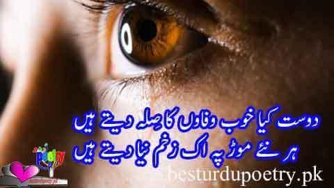 dost kya khoob wafaon ka sila dete hain poetry image