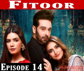 Fitoor Episode 14