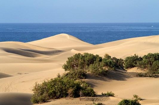 entre mer et désert