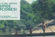 Dejusticia Global Indigenous Workshop 2019 (Fully-funded)