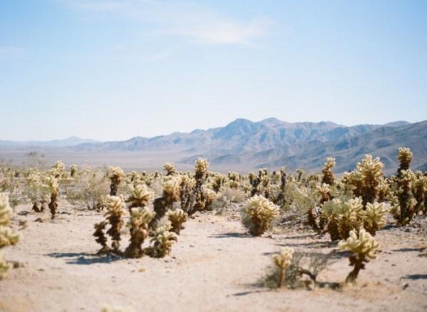 california desert road trip - entouriste