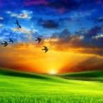 La PAZ de la eternidad. NO hay que estar tristes, hay que dejarlos ir