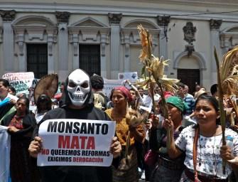 La derogación de la 'ley Monsanto'