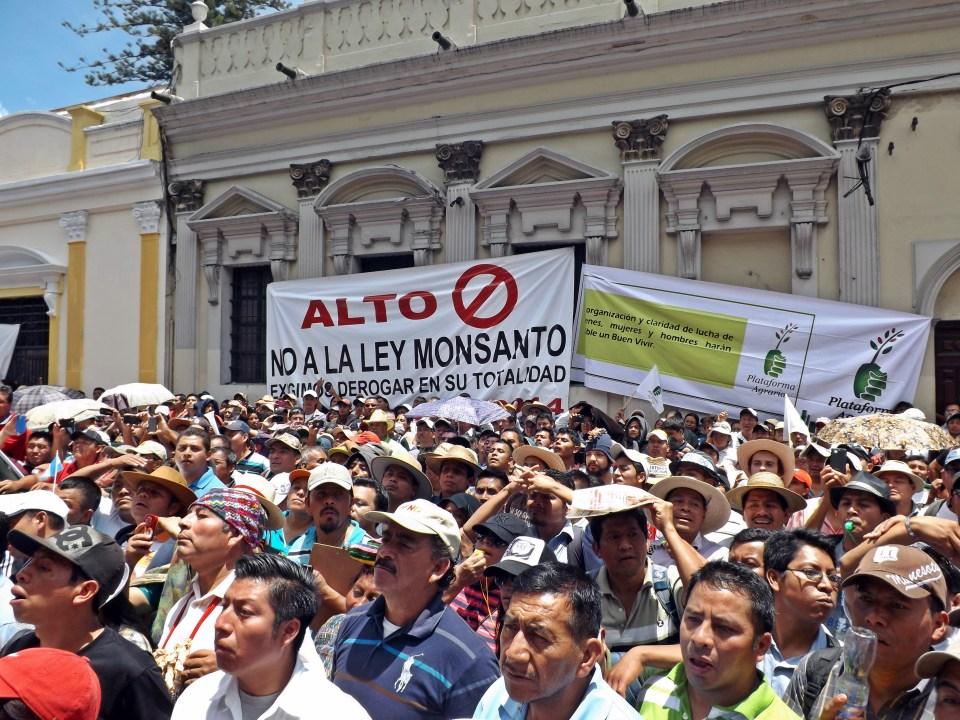 Manifestantes frente al Congreso en Ciudad de Guatemala, Agosto 2014. Foto por Ricard Busquets